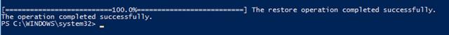 Kết quả quét DSIM trong Windows 10